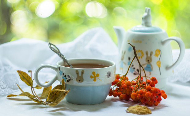 Чаепитие и песни